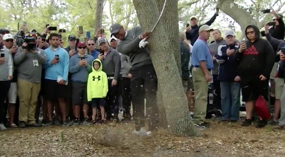 Tiger Woods hits a low hook out of the trees on the 16th in the Valspar Championship in Tampa