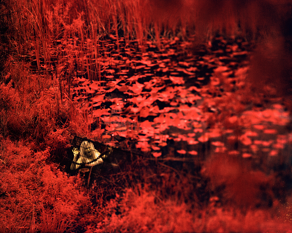 Episode 3 ~ Bleed for Me Again *   Large Format Infrared *  10 Print Limited Edition