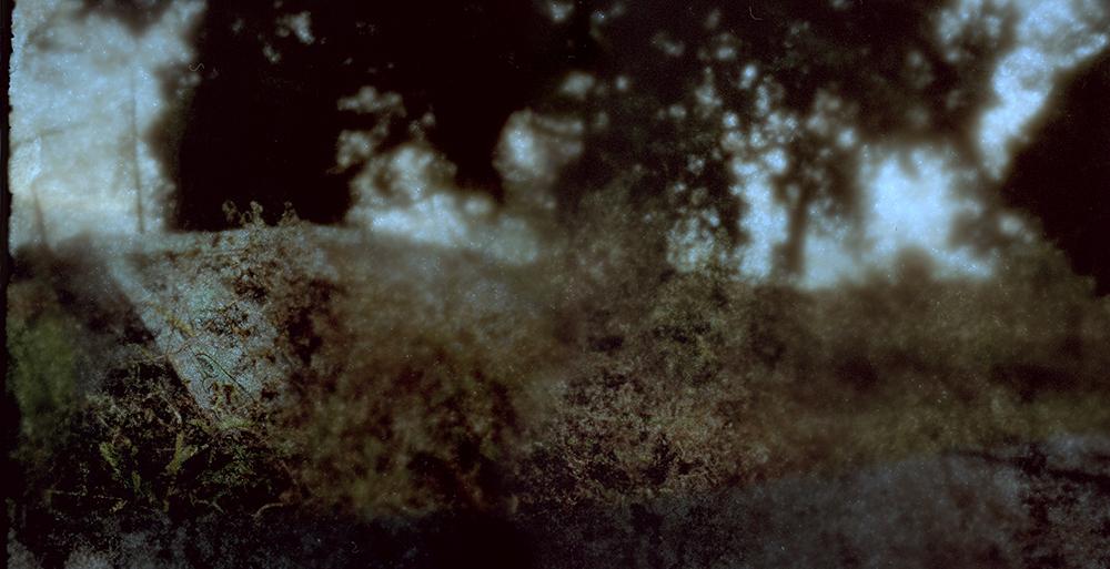 In Memories Past 1 *   Medium FormatColor Reversal