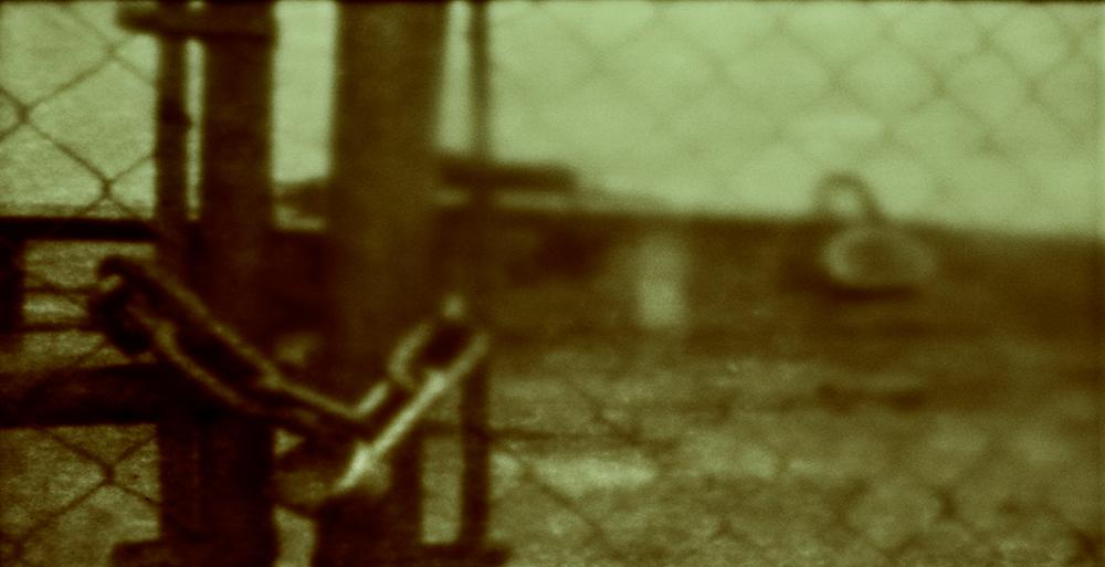 Aphotic Devastation ~ Episode 9    *     35mm Tinted B&W