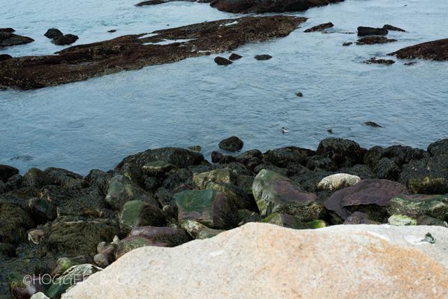 Rockport_2014_©HOGGER&Co._002.jpg