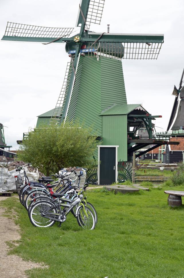 zs_cycle.jpg