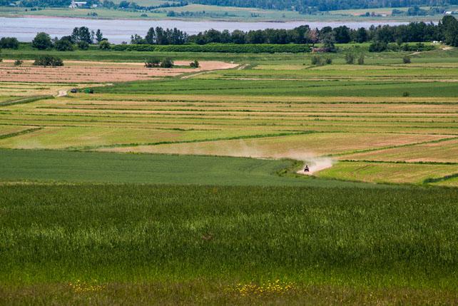 Nova_Scotia_©Hogger&Co._blog_032.jpg