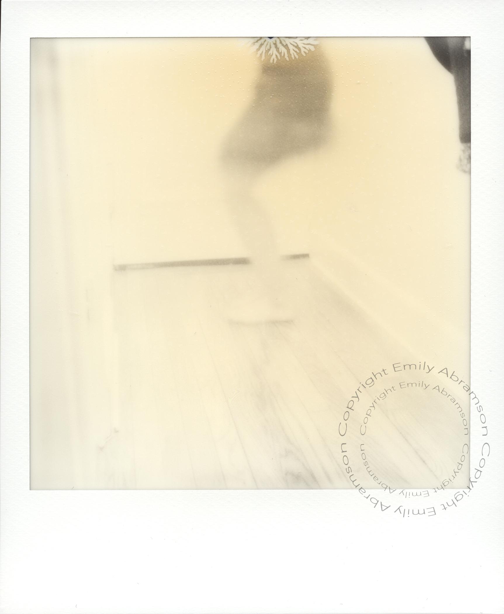 Polaroid 4WM.jpg