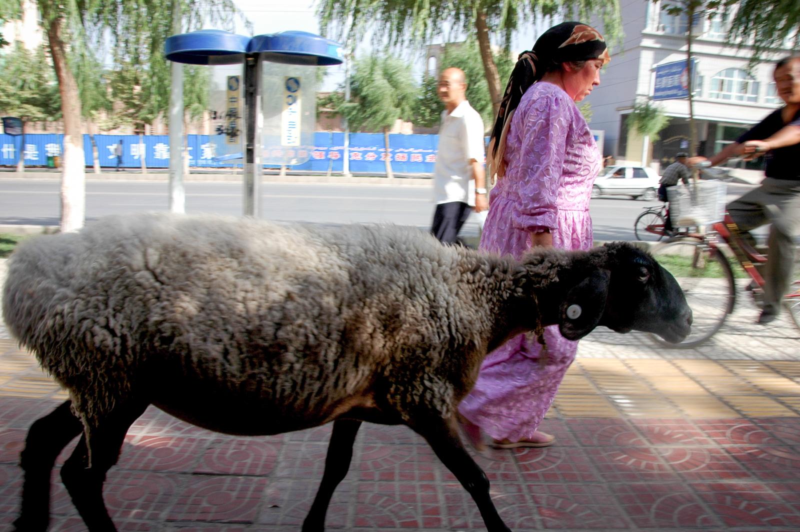 Xinjiang-3.jpg