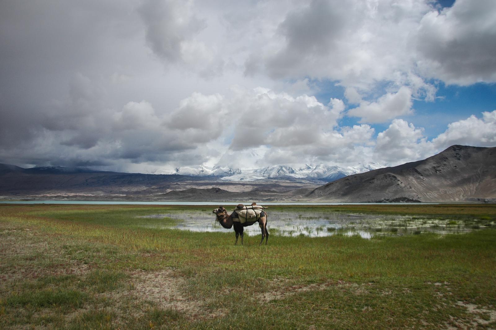 Xinjiang-20.jpg