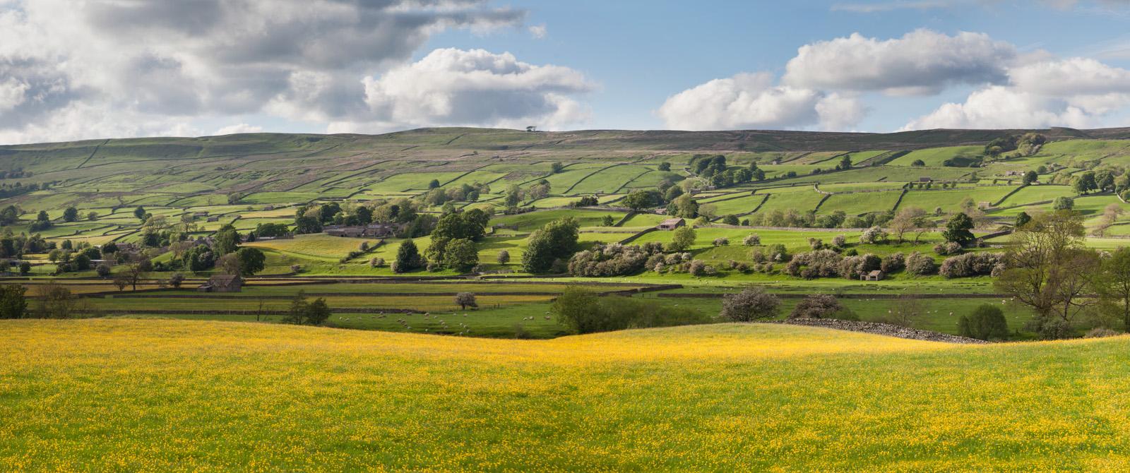 Wensleydale, Yorkshire. England