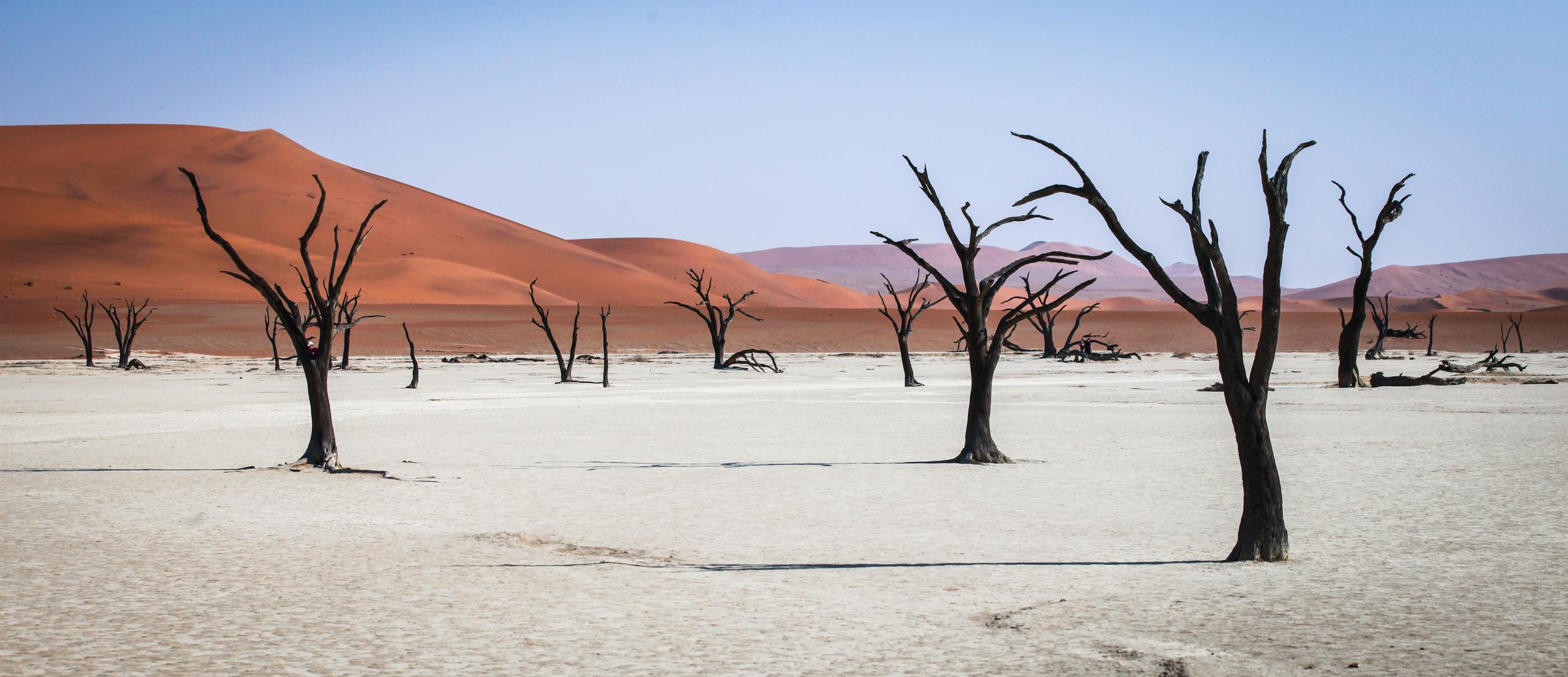 Namibia-55.jpg