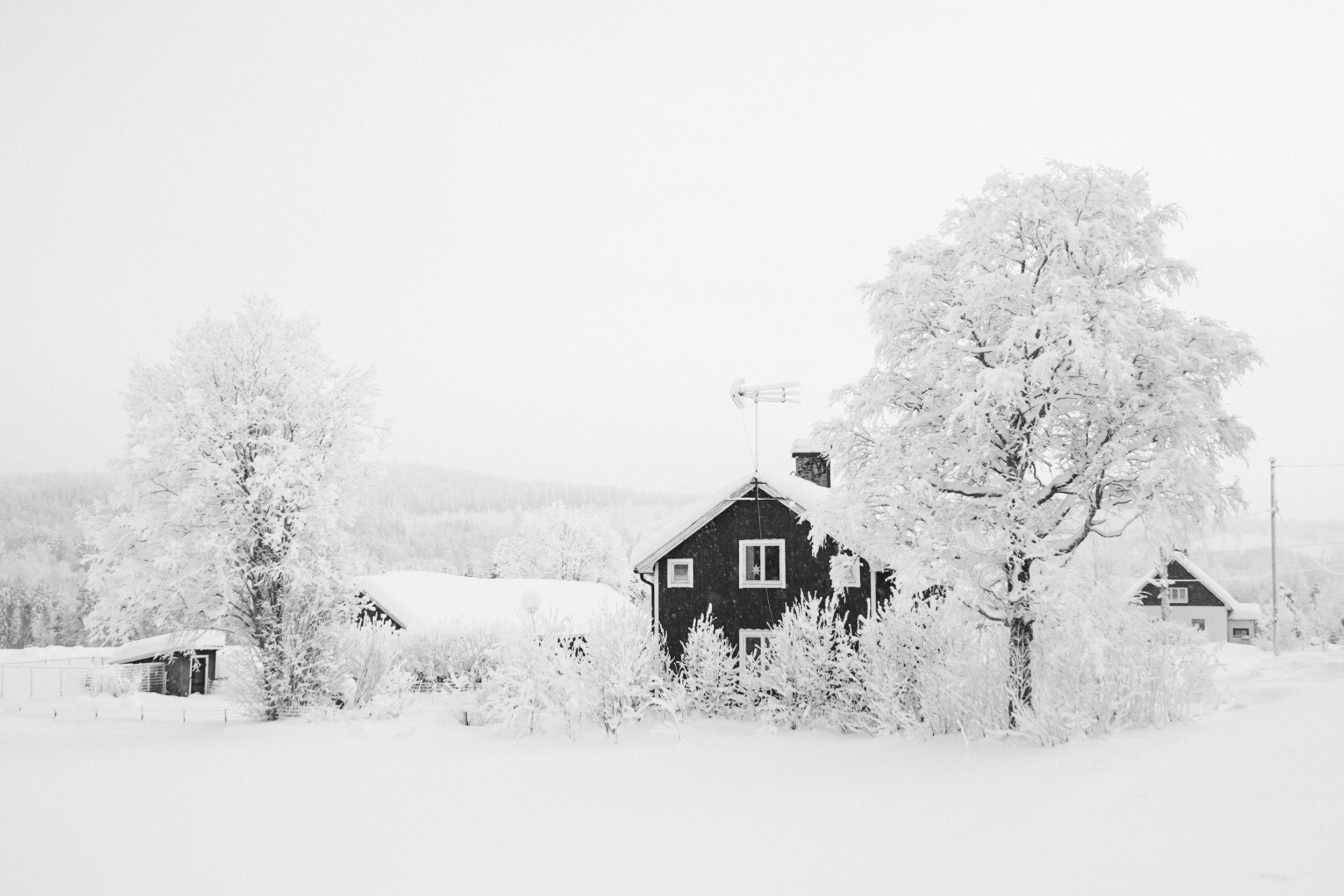 Volvo Sweden edits-53.jpg