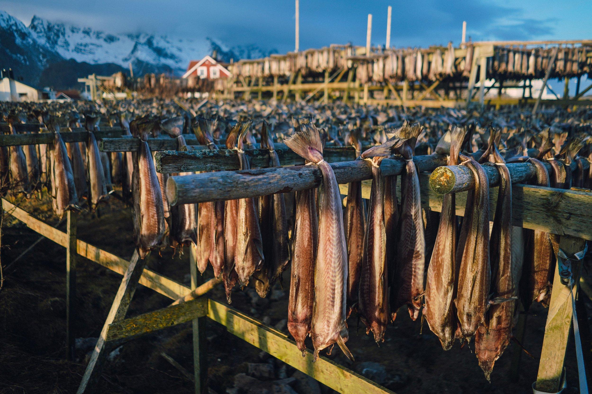 Simon Buxton for Porter Magazine Norway-117.jpg