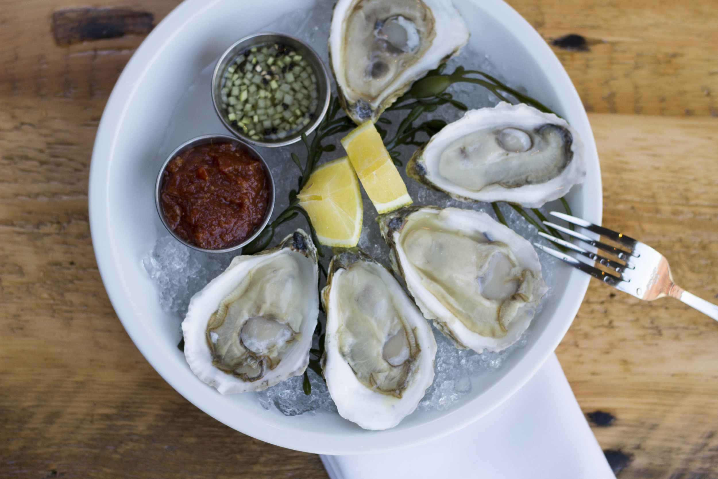 Oysters Above.jpg