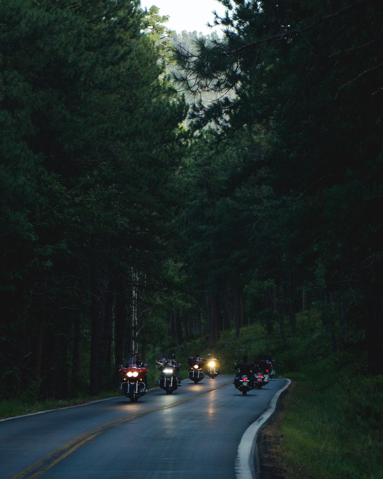 polar-visual-taylor-sheppard-photography-photo-video-motion-design-graphic-blackhills-south-dakota-sturgis-bike-rally-needles-highway-motorcycle-mount-rushmore-usa.jpg