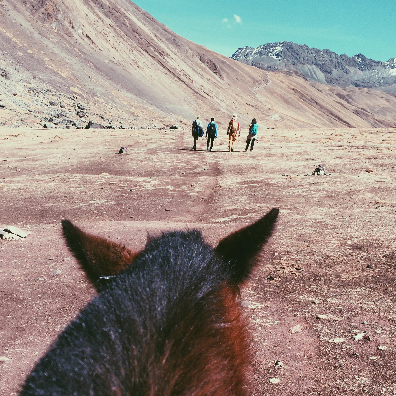 eu no cavalo e meus amigos firmes e fortes ali na frente