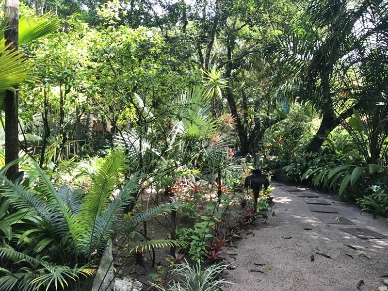 Caminho da recepção até a suíte: muita área verde!