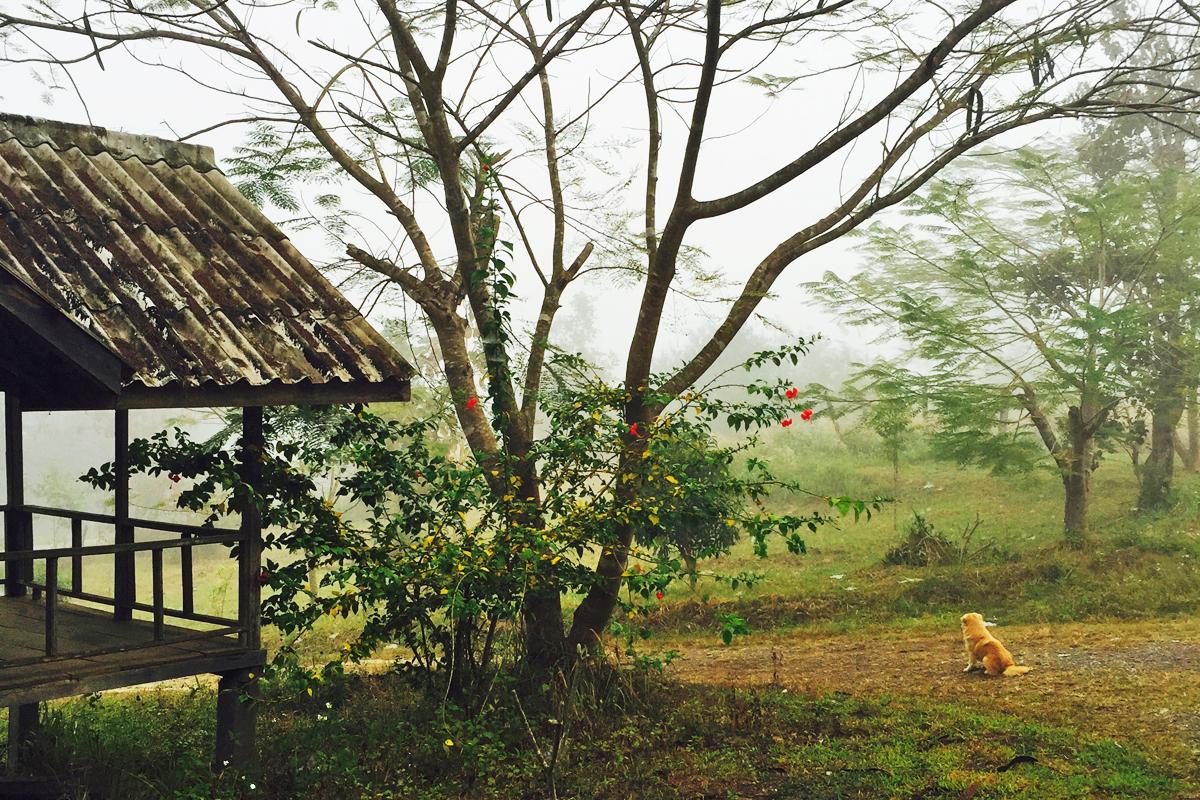 TRAVESSIA-TAILANDIA-LAOS-08.jpg