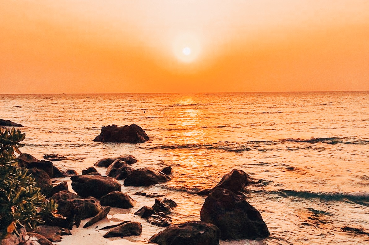 CAMBOJA-PALM-BEACH-18.jpg