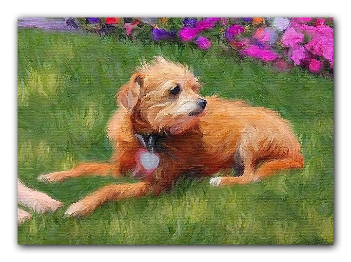 dog painting detail 2