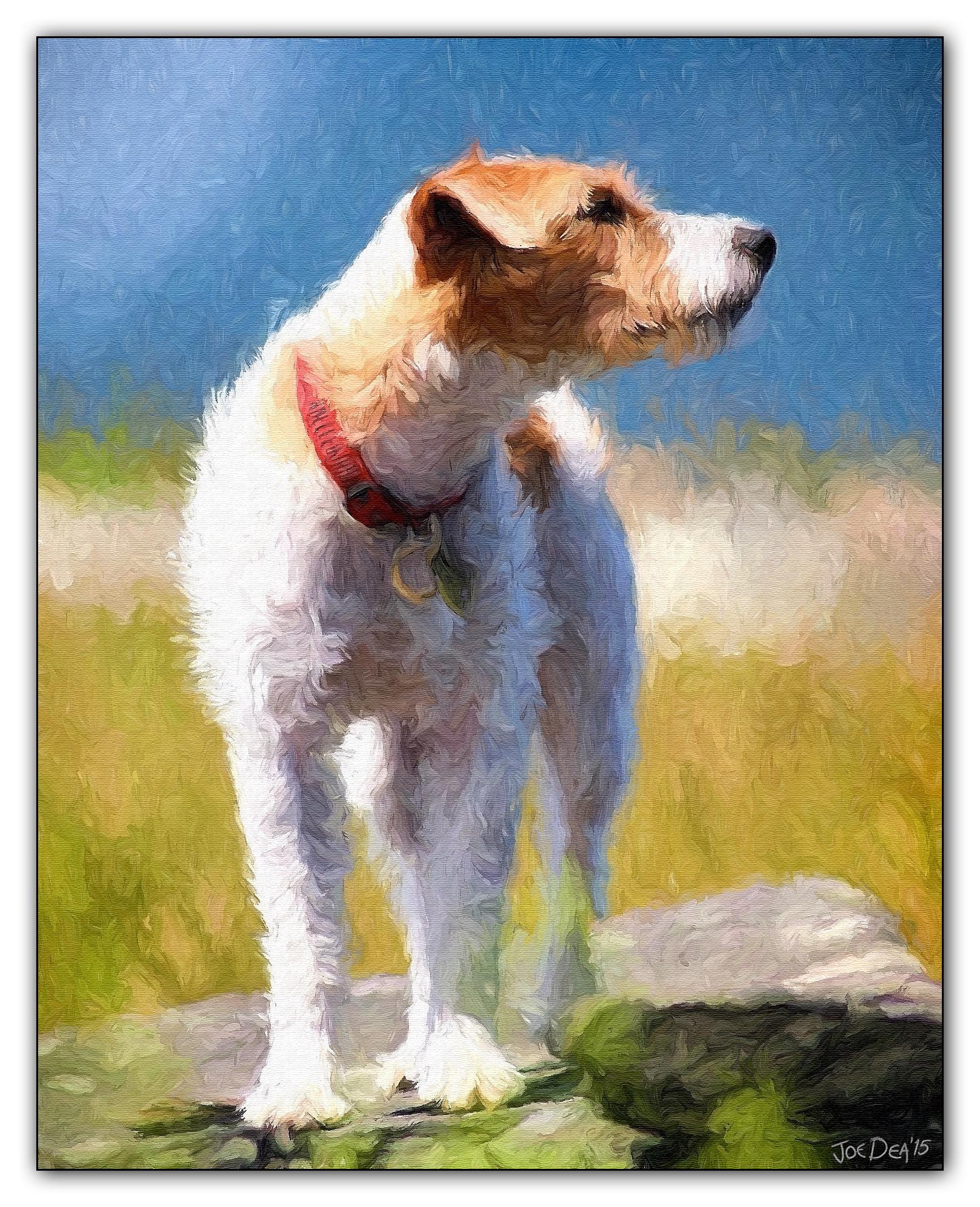 Jack-Russel-Terrier-Painting