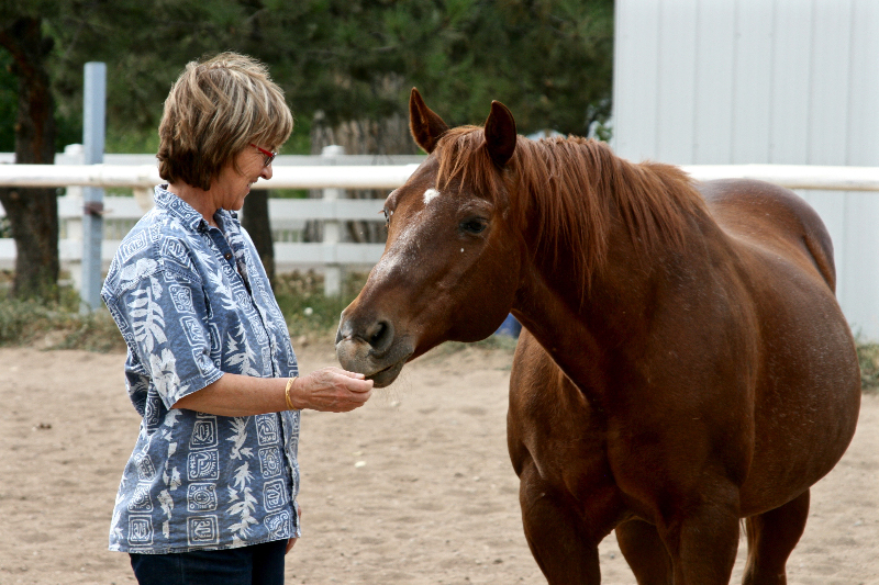 woman with horse photo