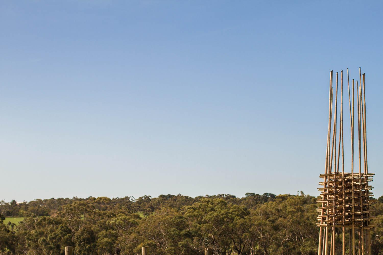 S.O.S Melbourne_Photography Mercurio Alvarado (6 of 18).jpg
