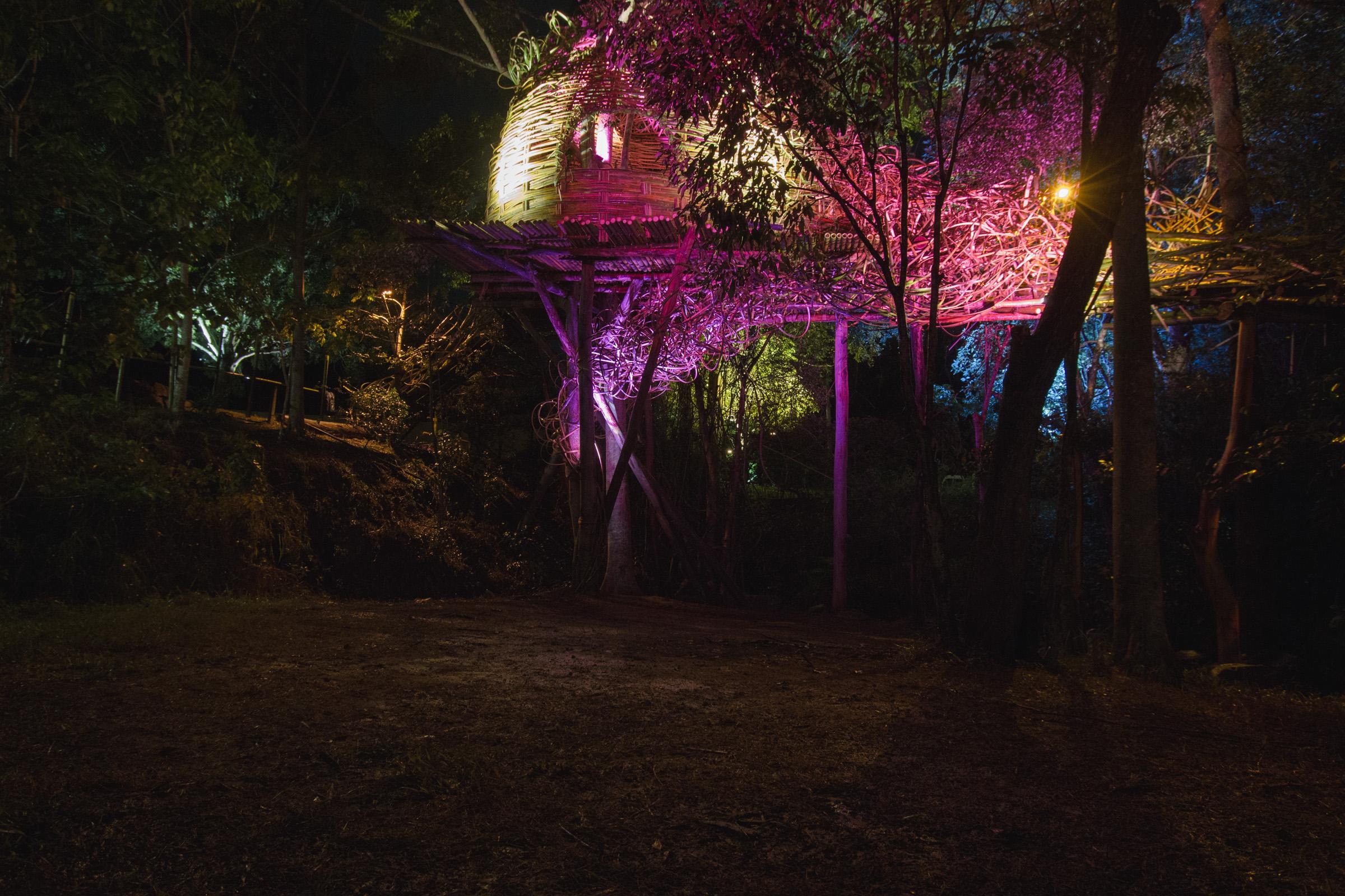Tree house photography by Mercurio Alvarado  (42 of 132).jpg
