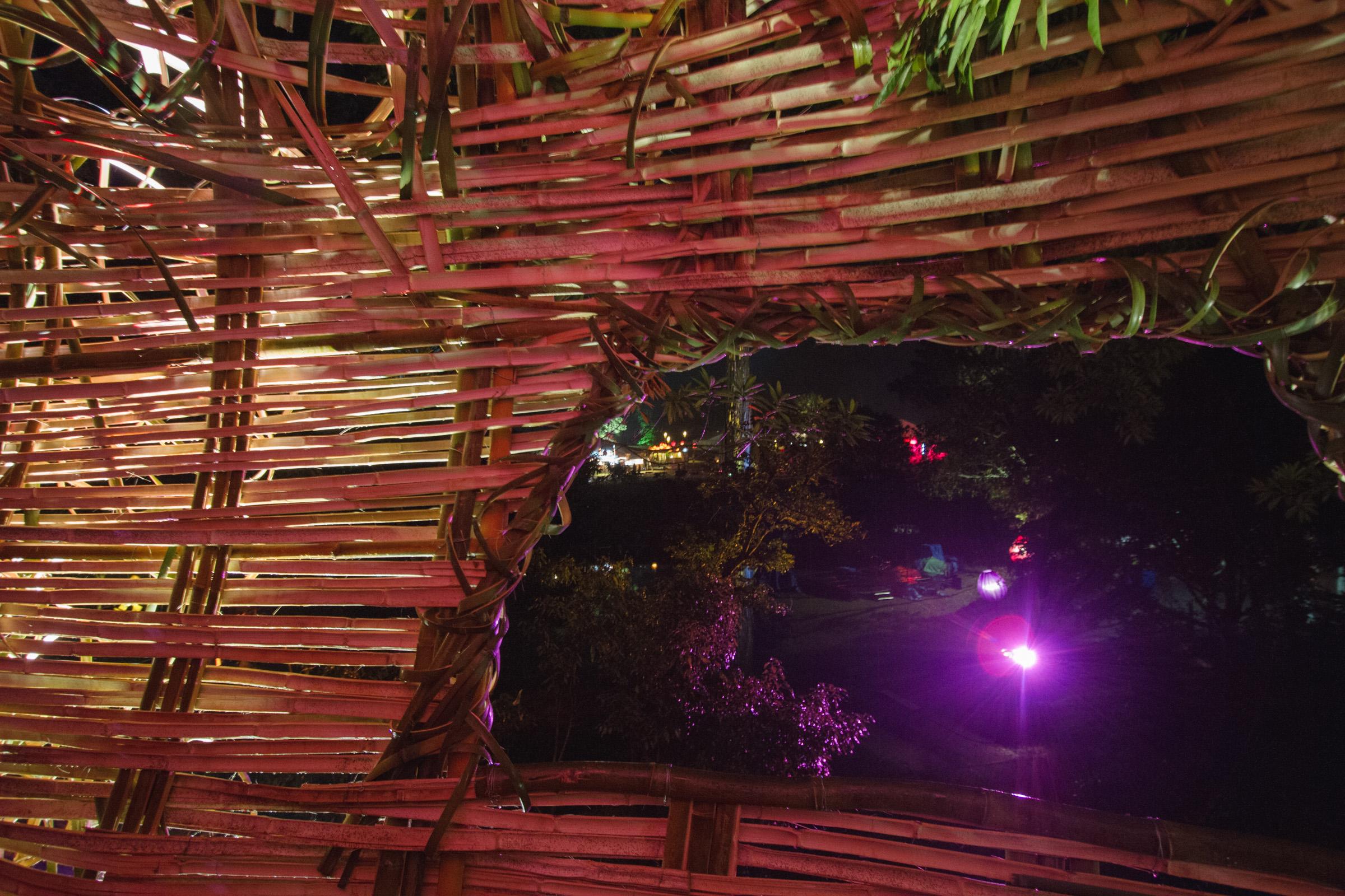 Tree house photography by Mercurio Alvarado  (67 of 132).jpg
