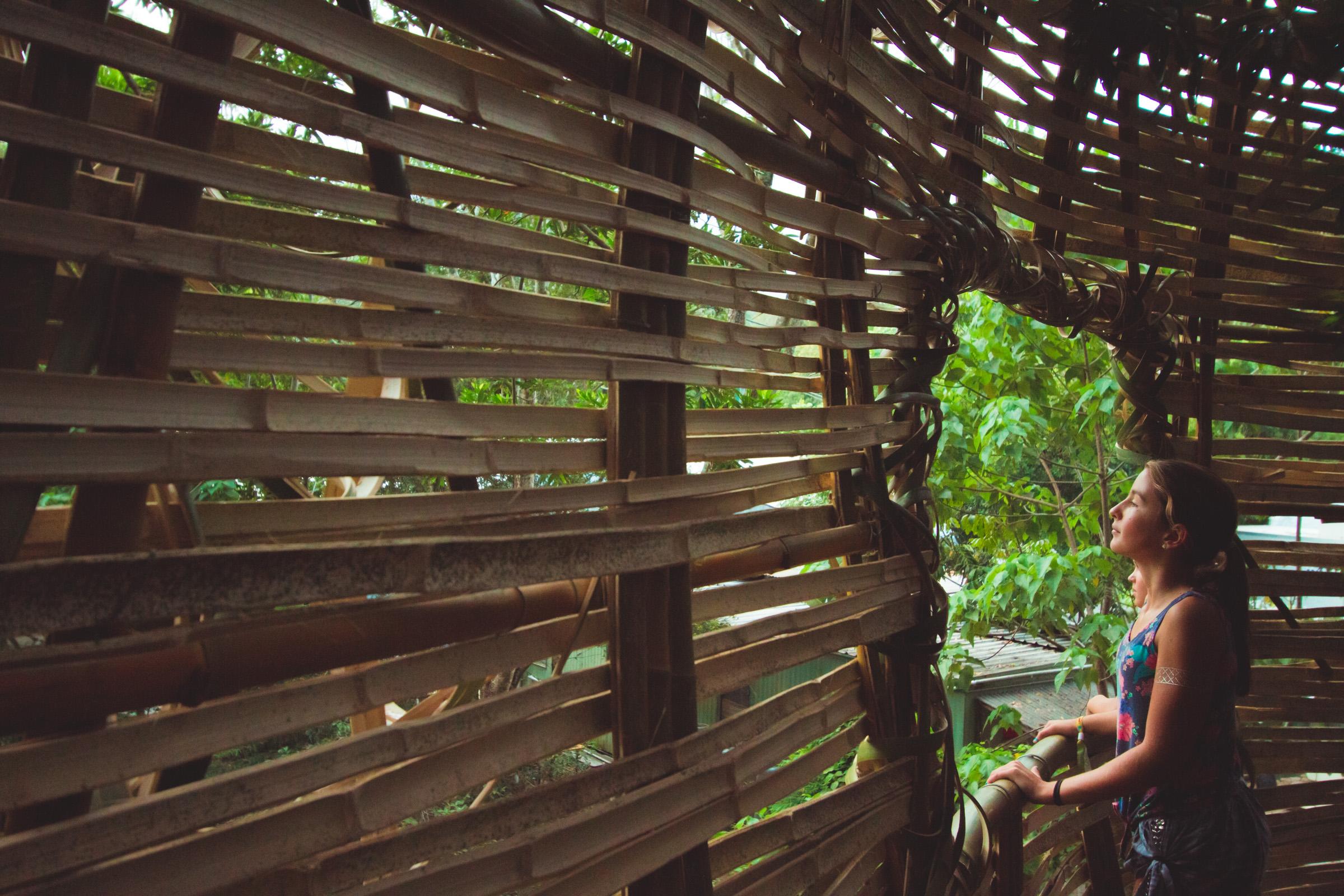 Tree house photography by Mercurio Alvarado  (109 of 132).jpg