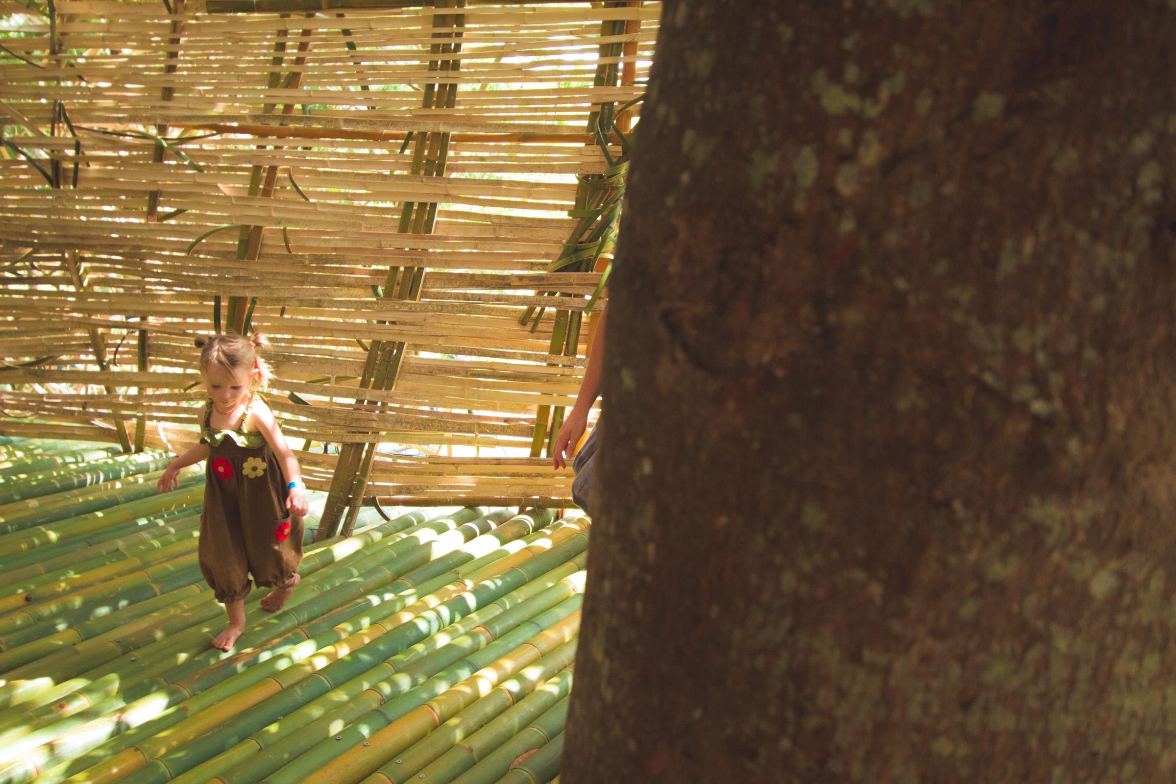 Tree house photography by Mercurio Alvarado  (118 of 132).jpg