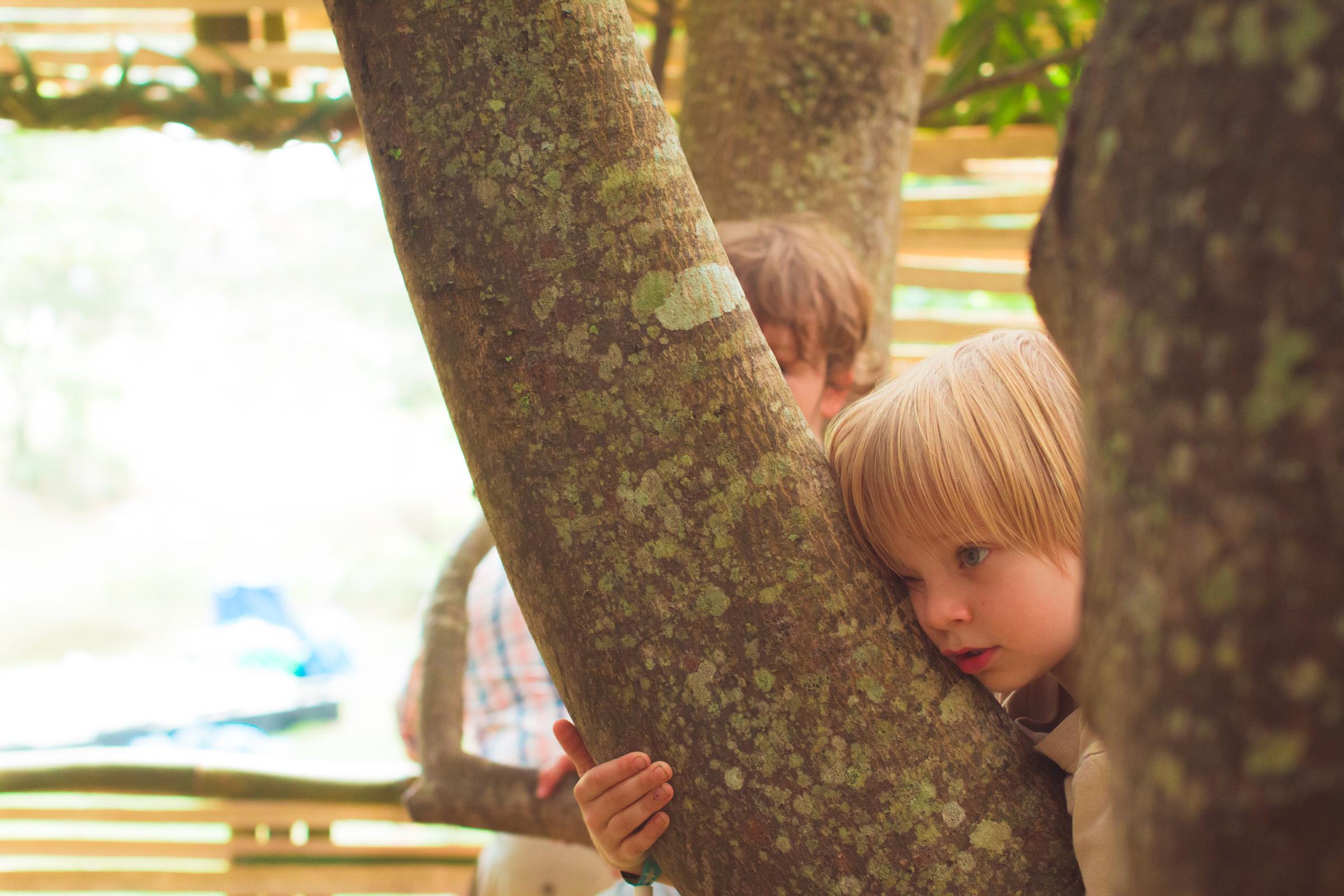 Tree house photography by Mercurio Alvarado  (124 of 132).jpg