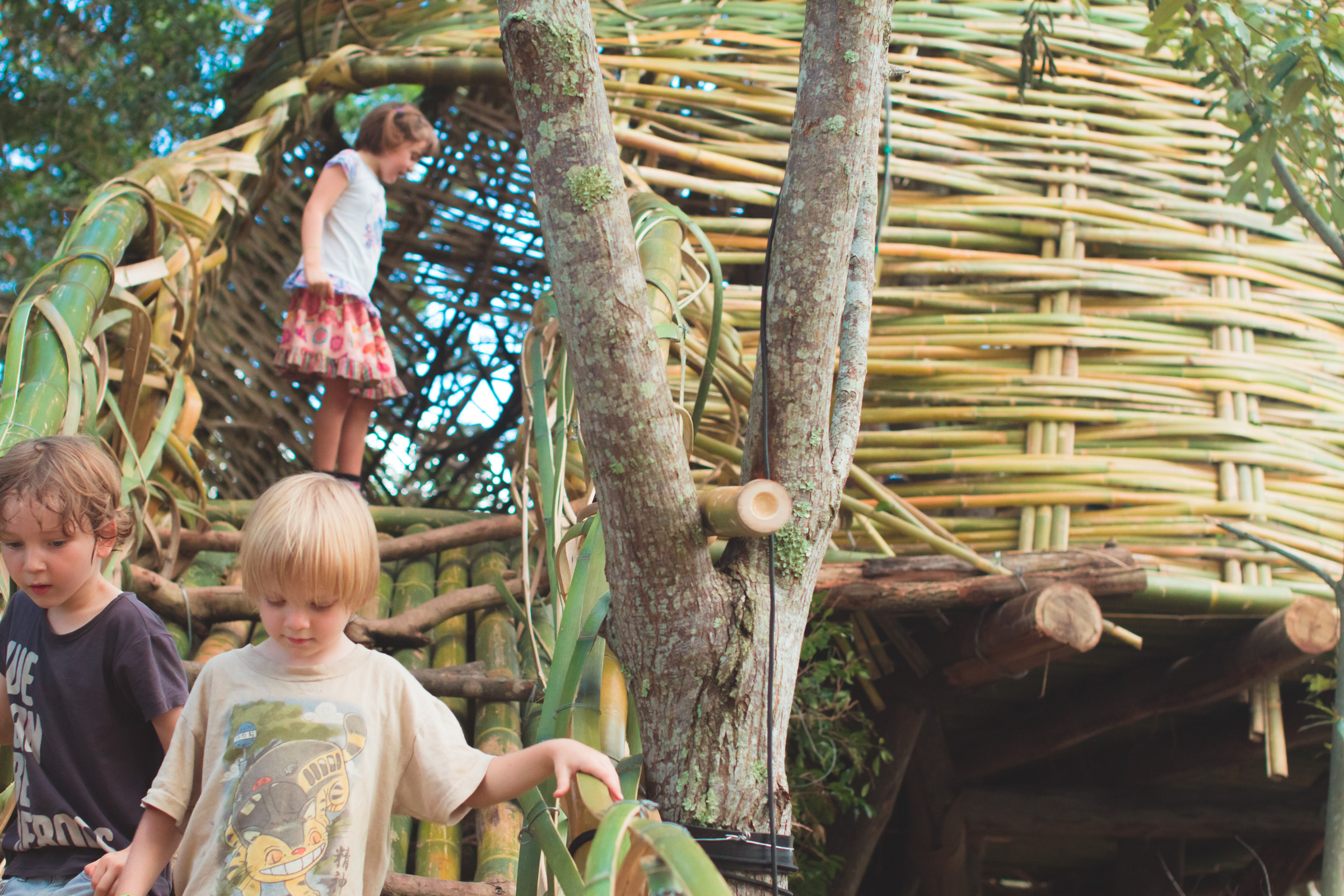 Tree house photography by Mercurio Alvarado  (130 of 132).jpg