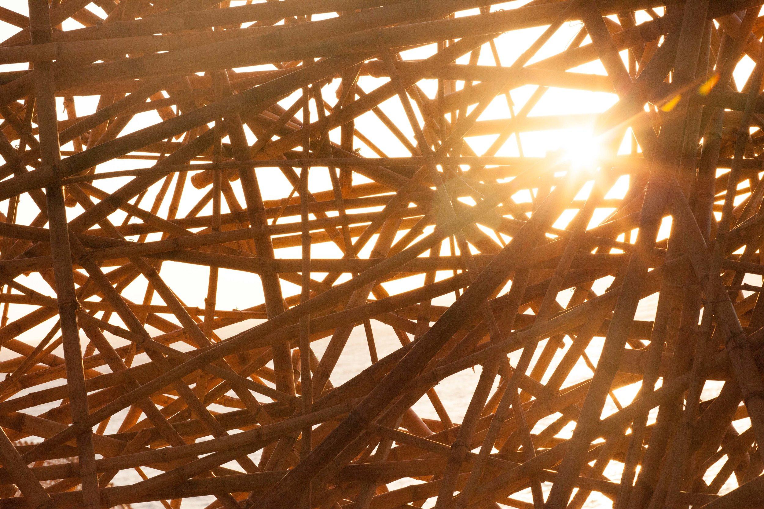 Golden hour (9 of 23)_1.jpg
