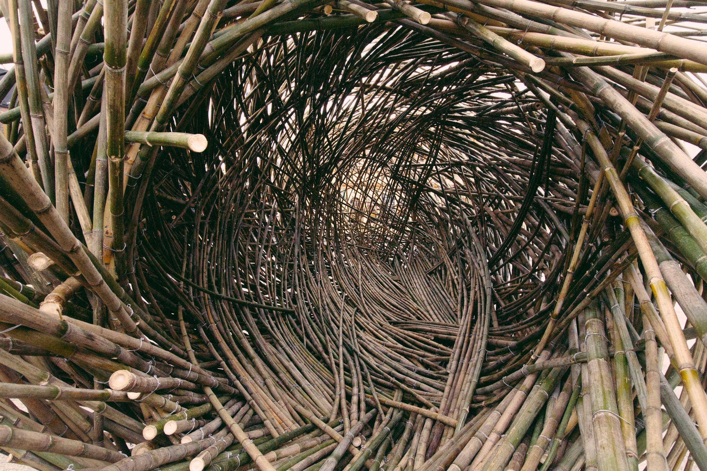 Regenesis Photography by Mercurio Alvarado (37 of 60).jpg