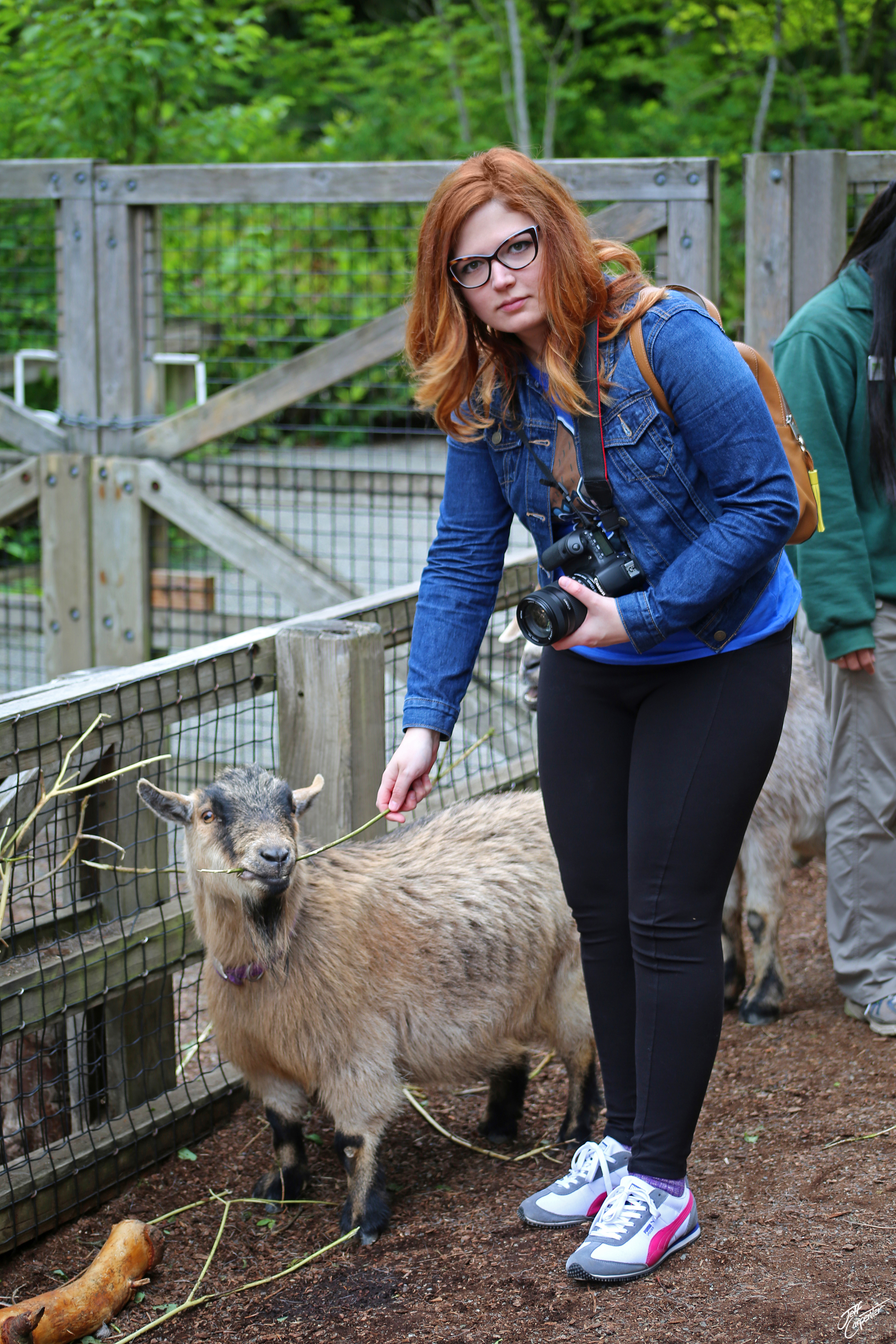 Wren, feeding a goat and matching it's expression.
