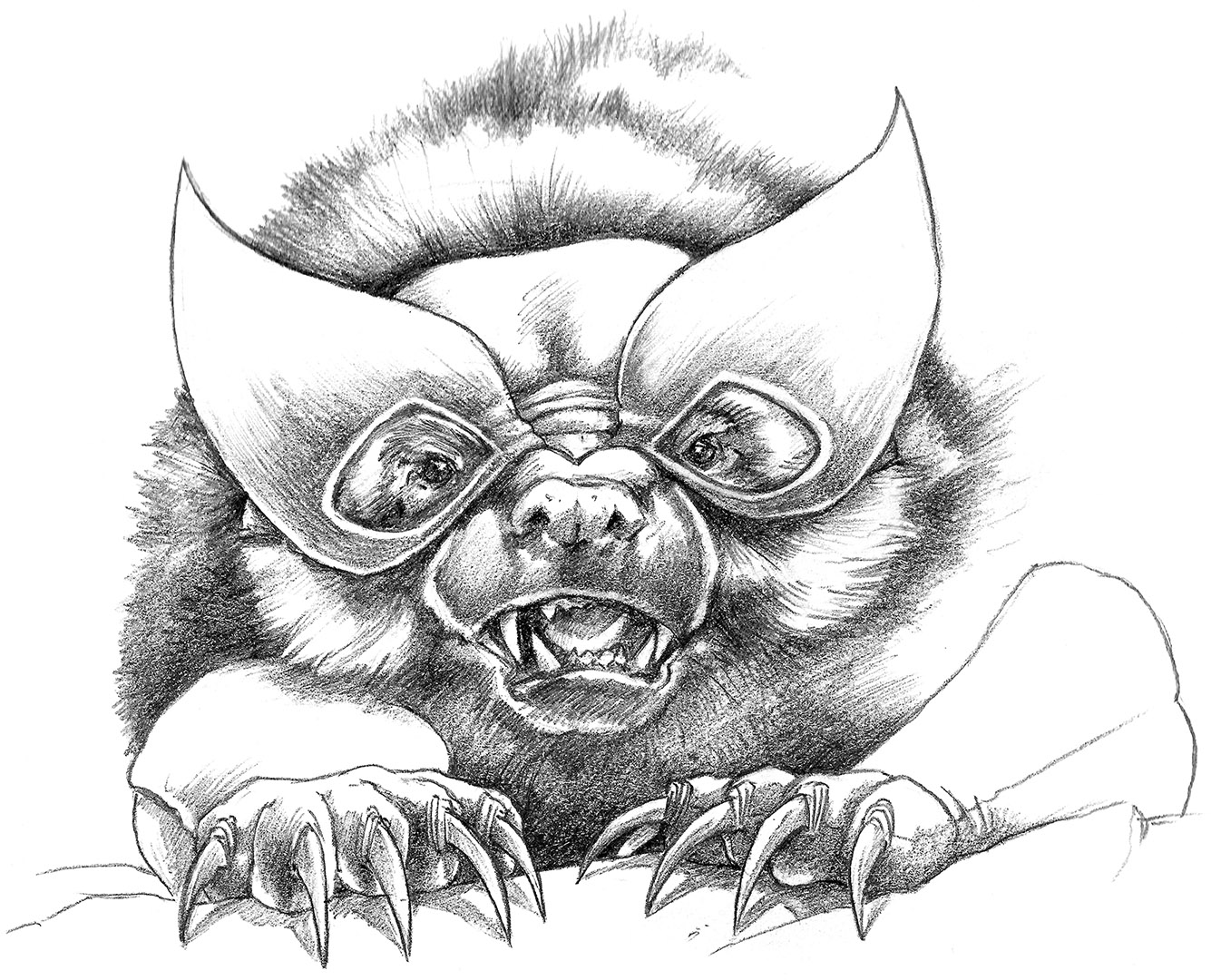 Wolverine_Sketch2.jpg