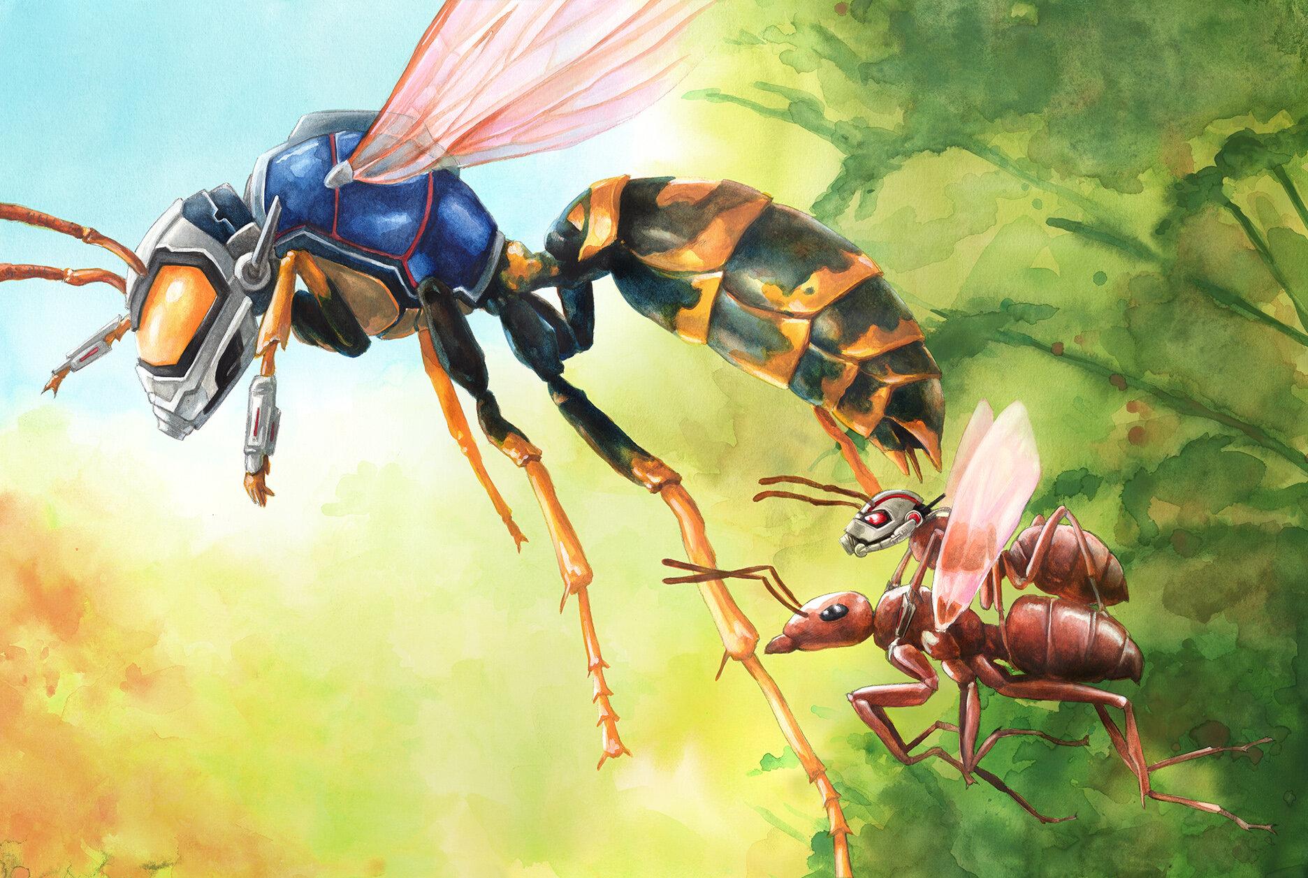 Ant&Wasp.jpg