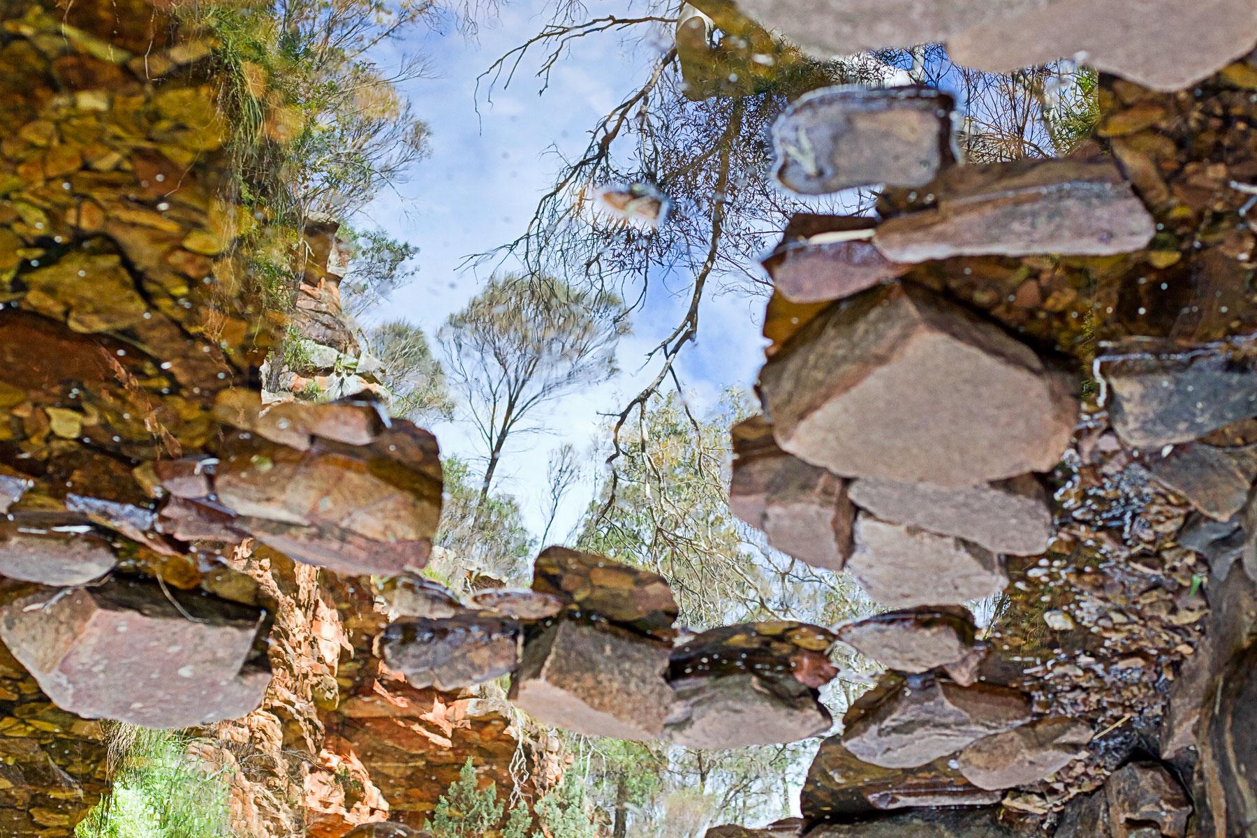 8 flinders bush creek reflection.jpg