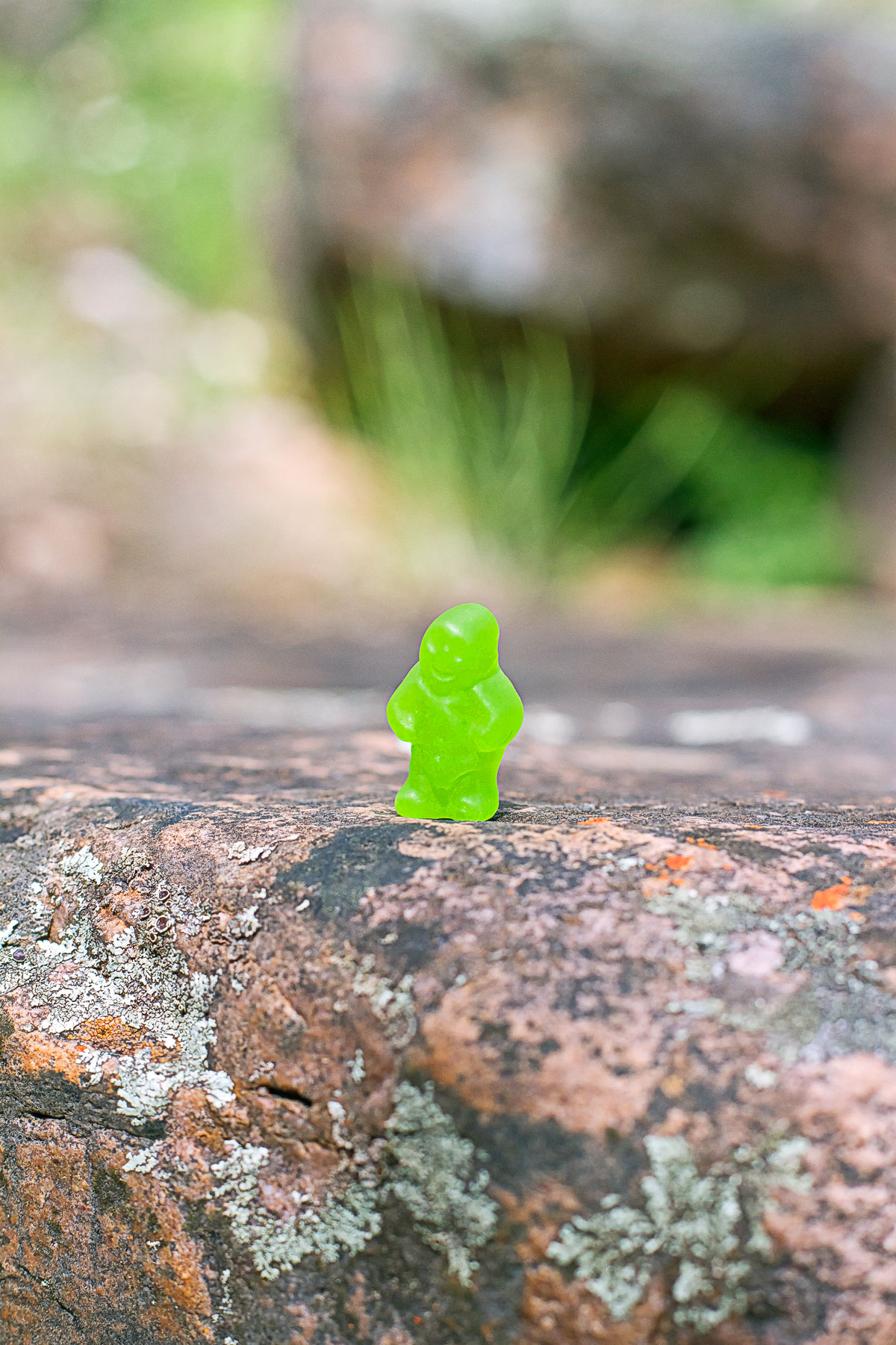 13 Green Jelly Baby on rock.jpg