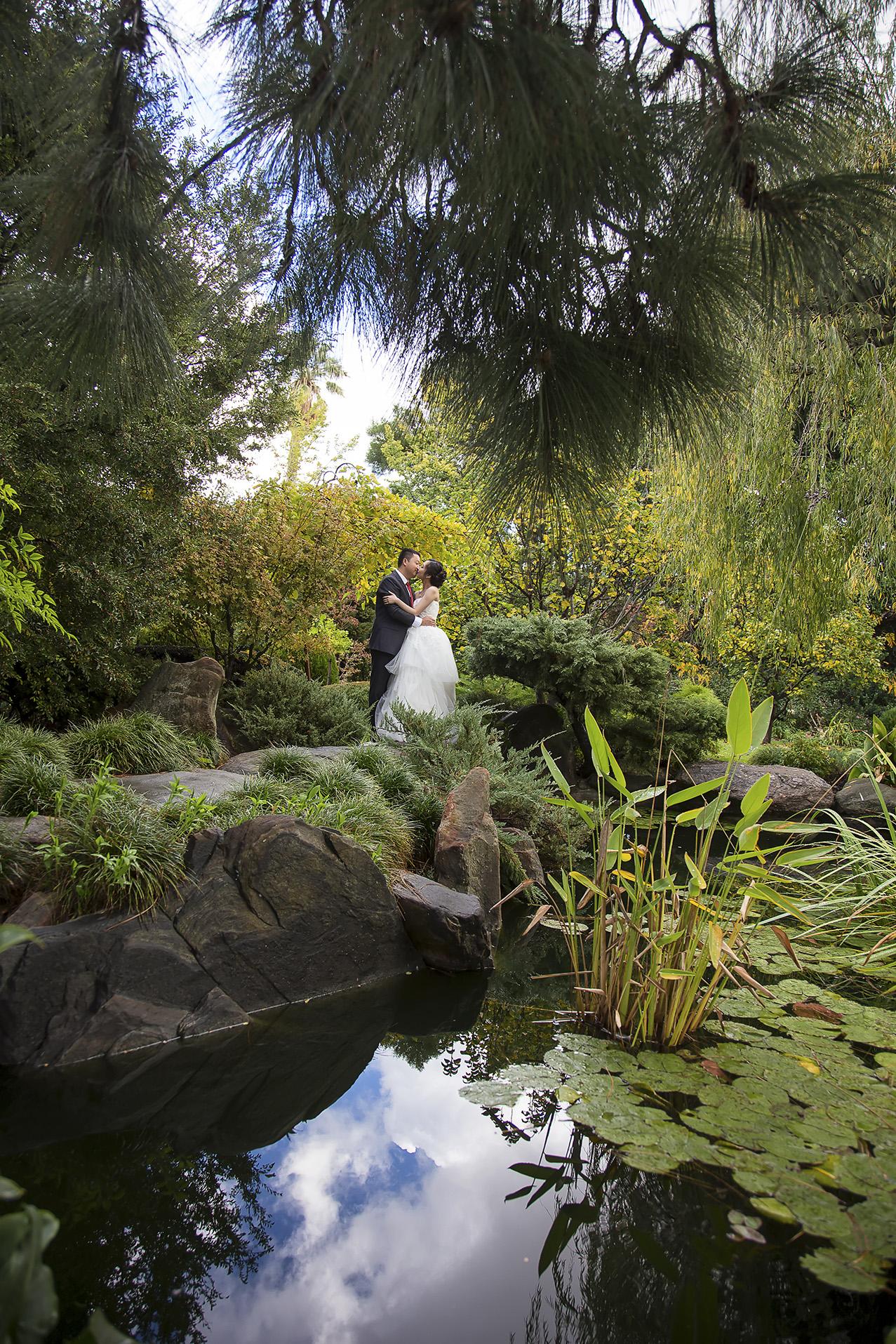 Wedding Photography Adelaide Japanese Himeji Gardens