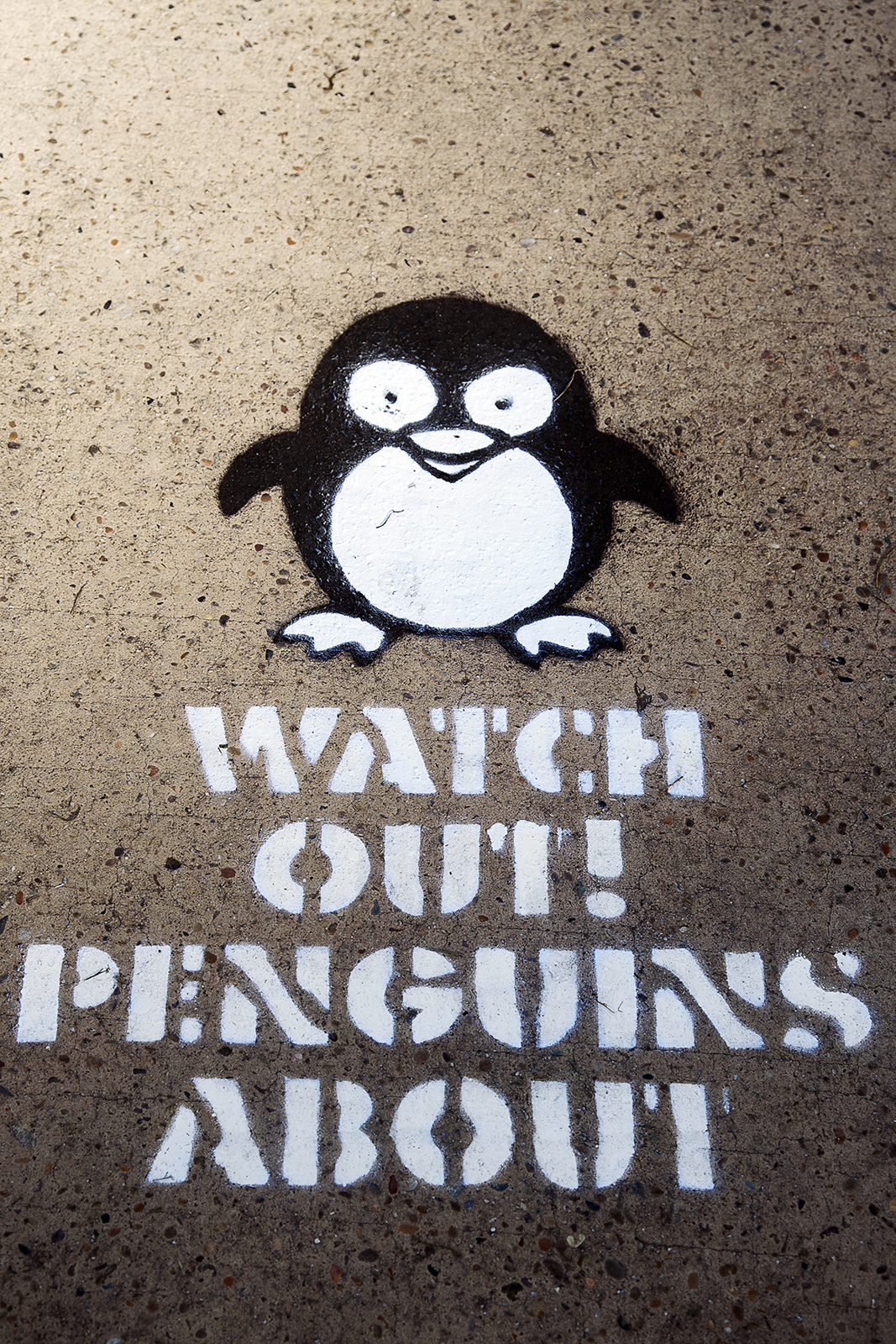 Watch out for penguins Sydney