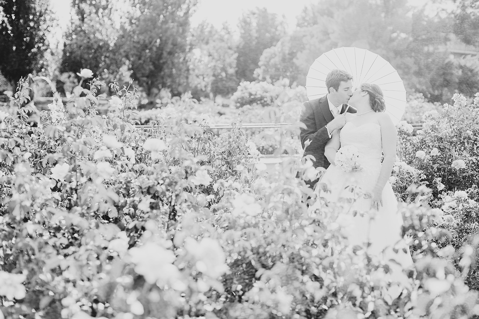 Dreamy Adelaide Veal Gardens Wedding Photo 07.jpg