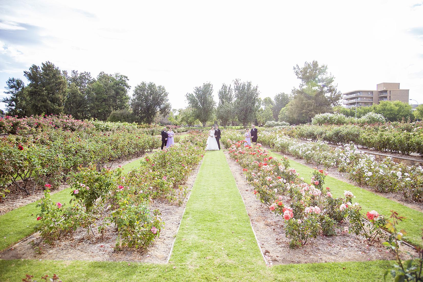 Dreamy Adelaide Veal Gardens Wedding Photo 06.jpg