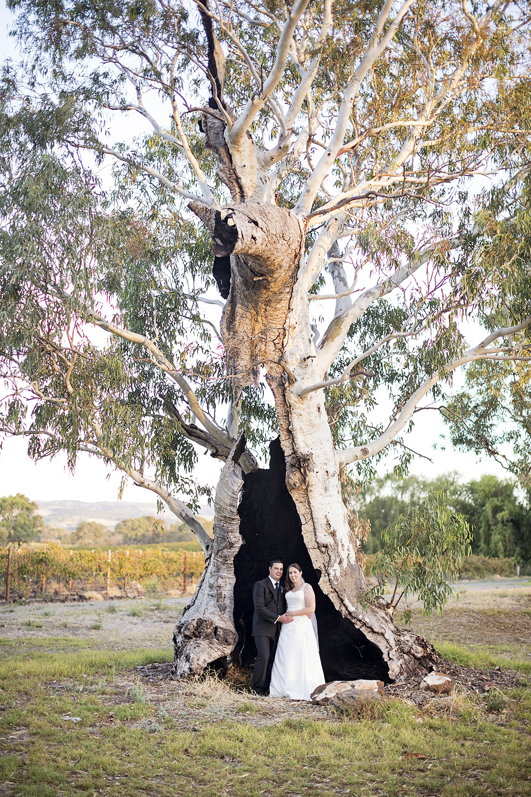 3 Serafino Winery Wedding Photograph 08.jpg