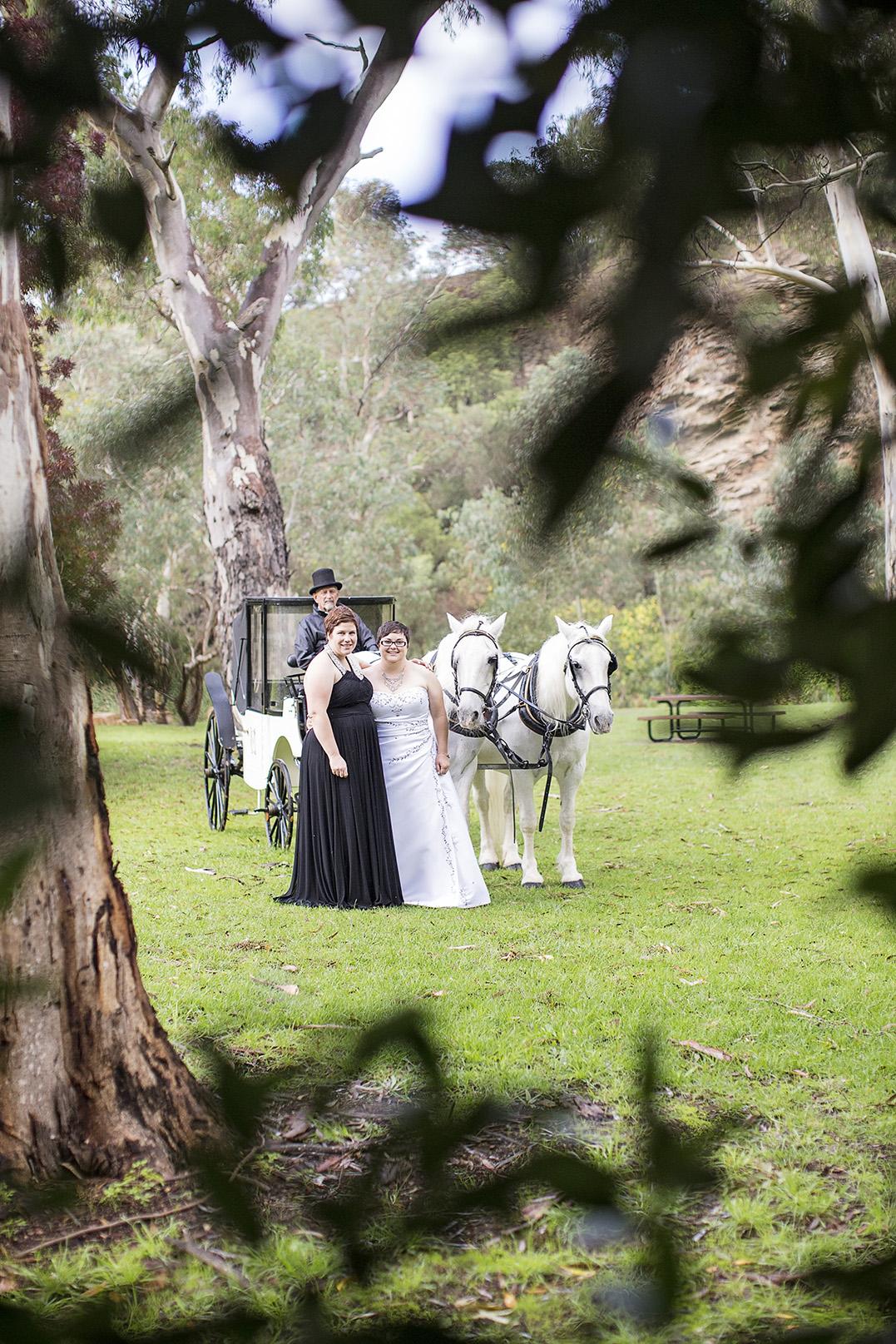 Clarendon Same Sex Wedding Photos 07 Horse & Carriage.jpg