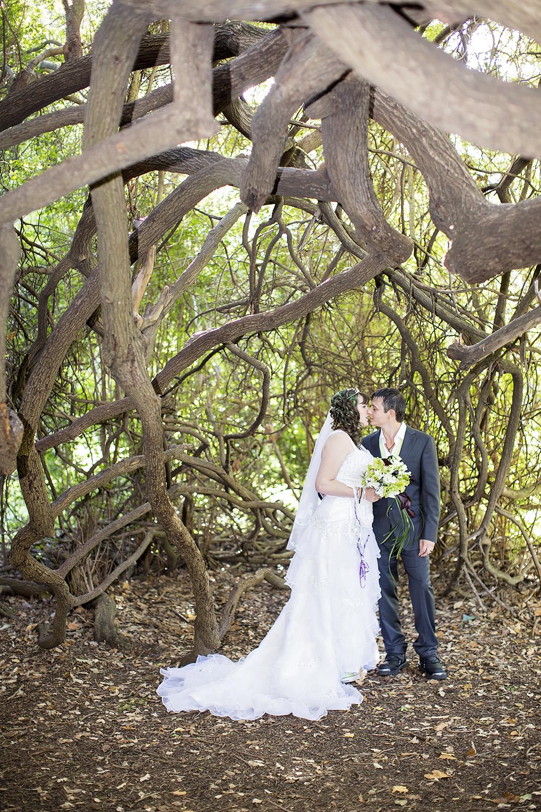 Unique Adelaide Zoo Wedding 24.jpg