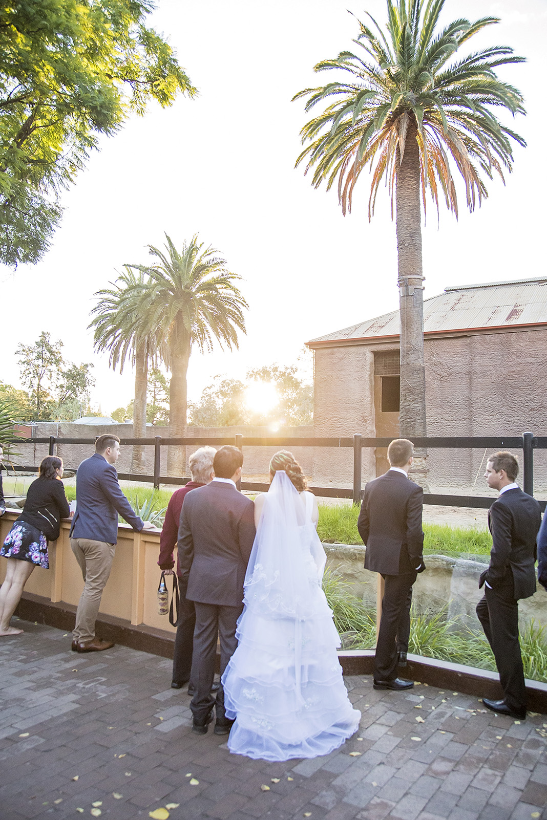 Unique Adelaide Zoo Wedding 38.jpg