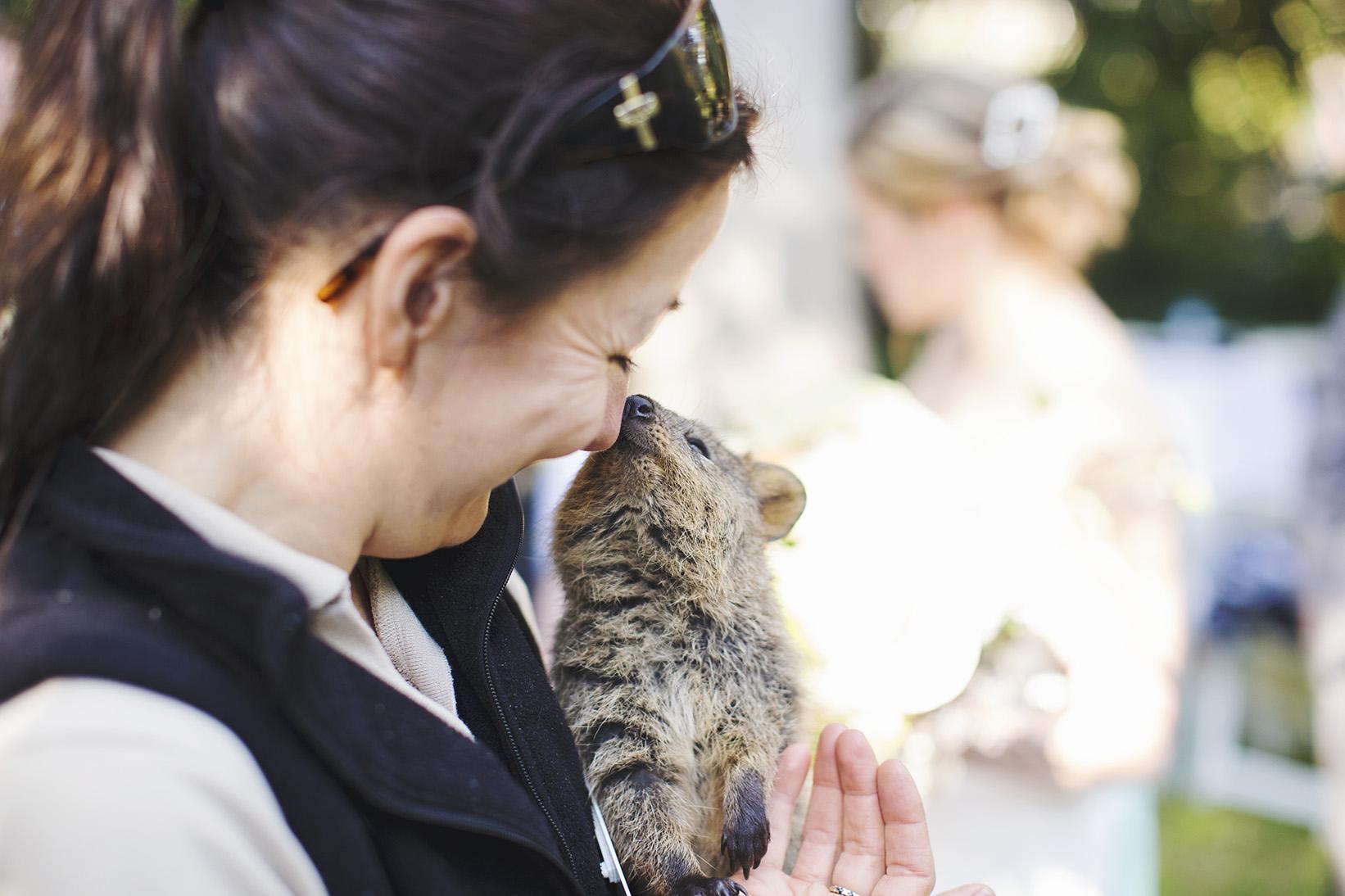 Surprise Adelaide Zoo Wedding 07.jpg