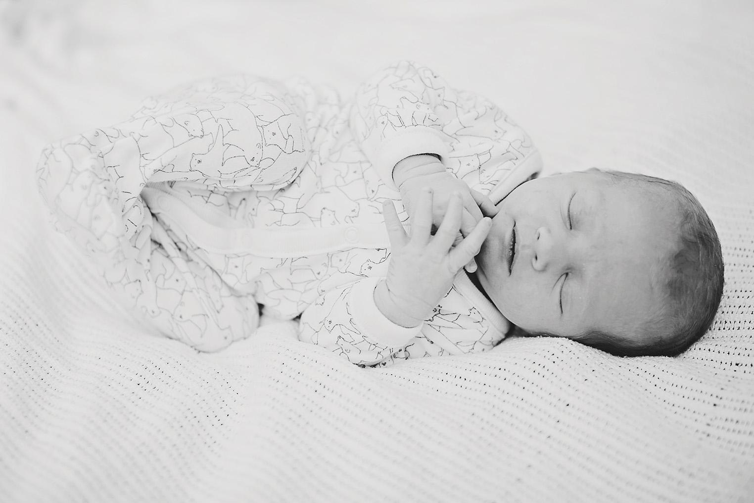 Natural Newborn Photos Adelaide 04.jpg