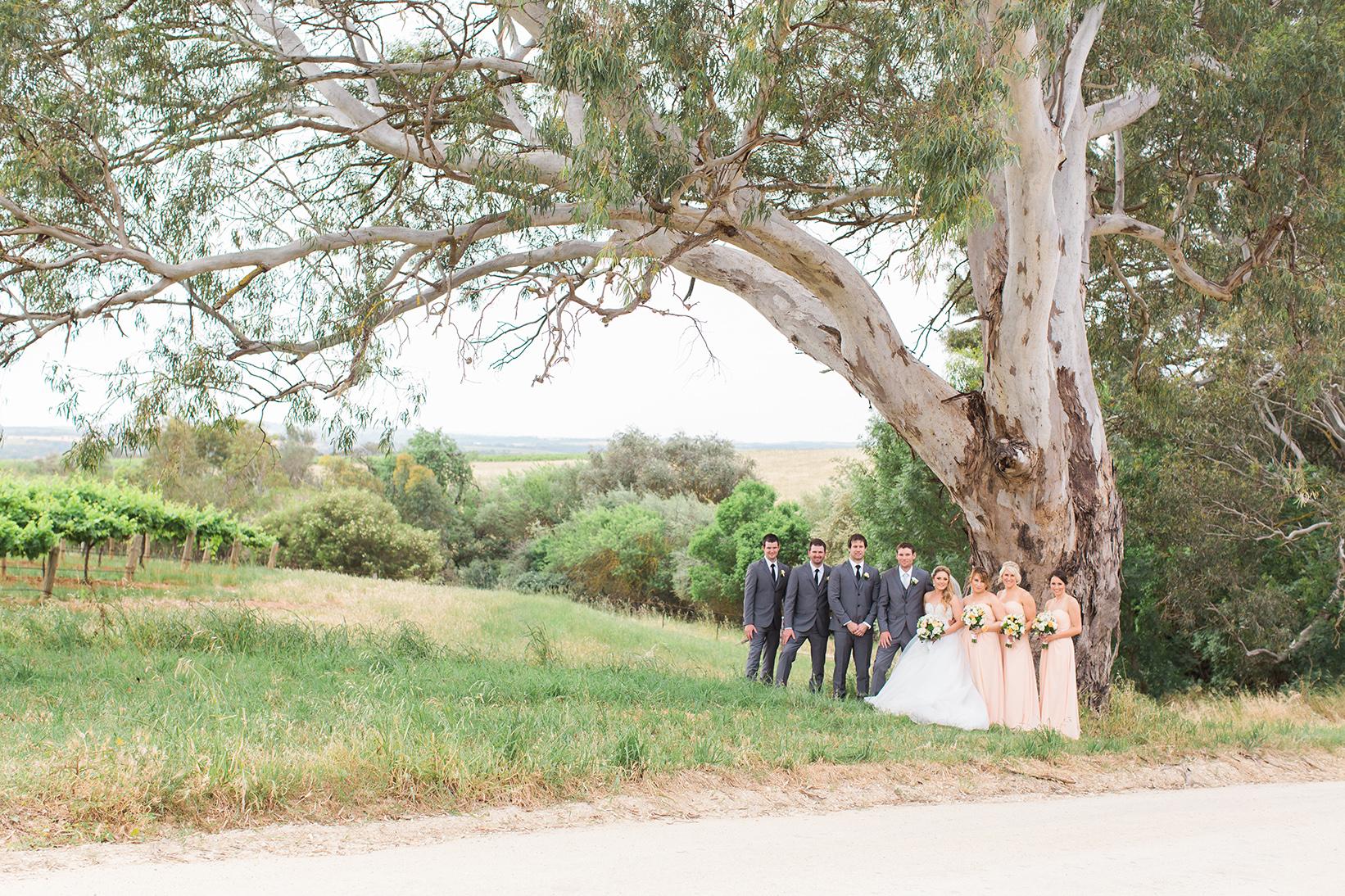 Stunning Tanunda Wedding 046.jpg