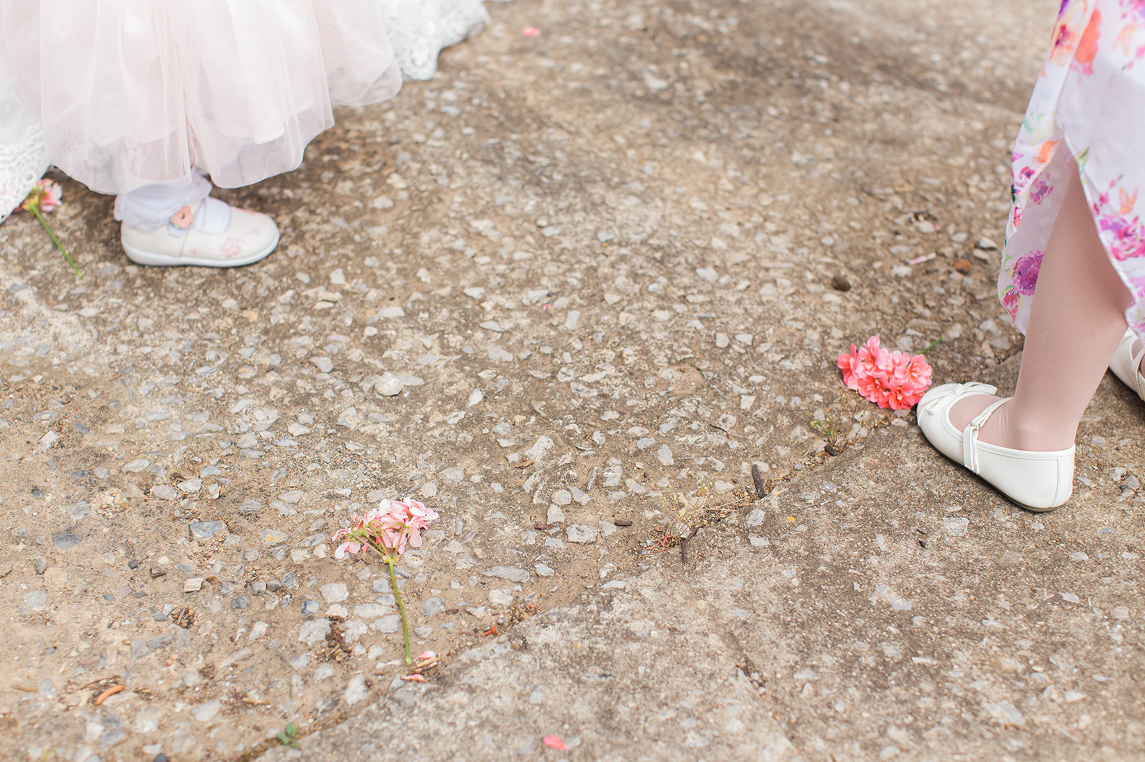 Perfect Willunga Wedding 12.jpg
