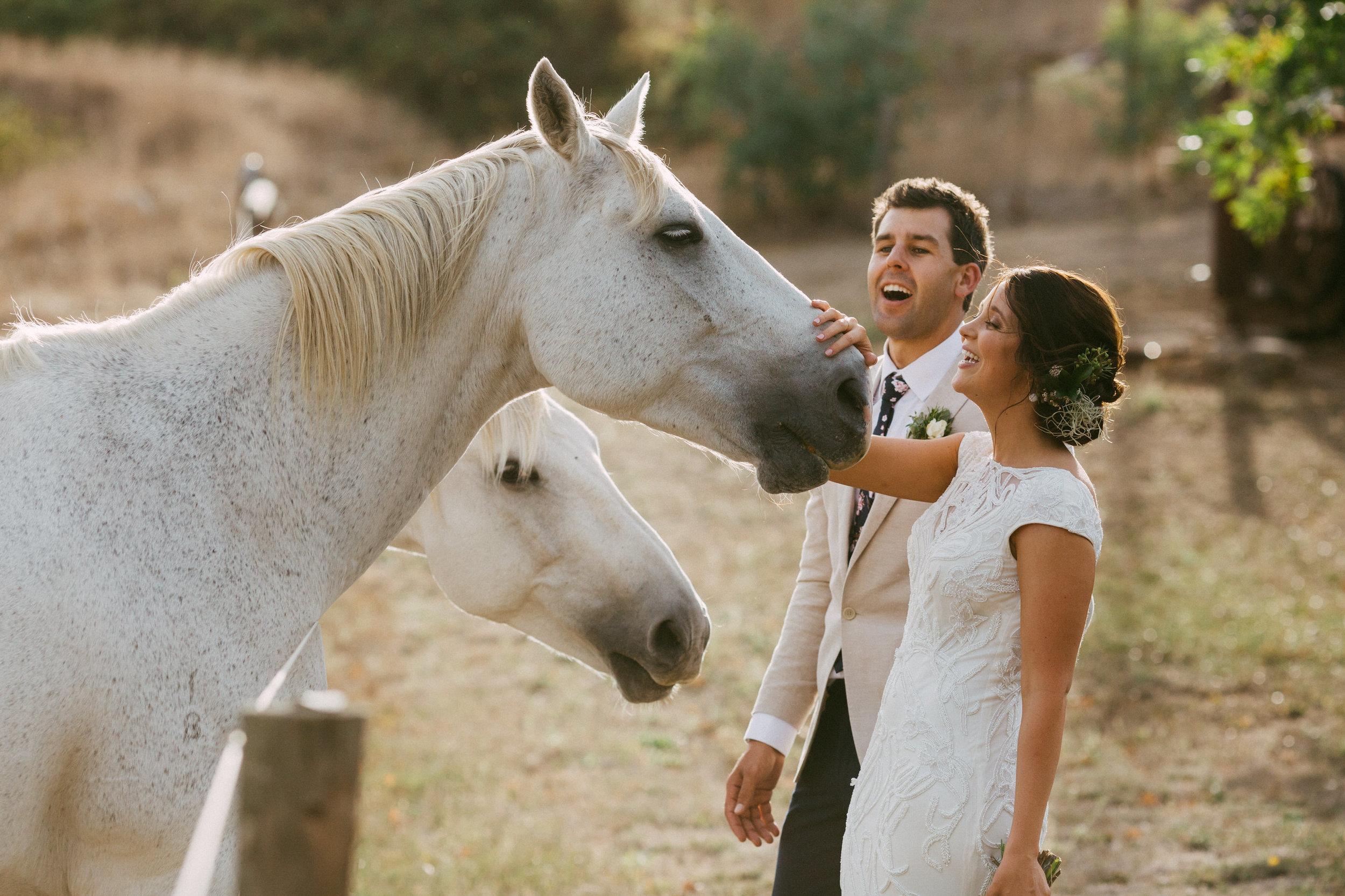 Adelaide Wedding Photographer Good Reviews.jpg